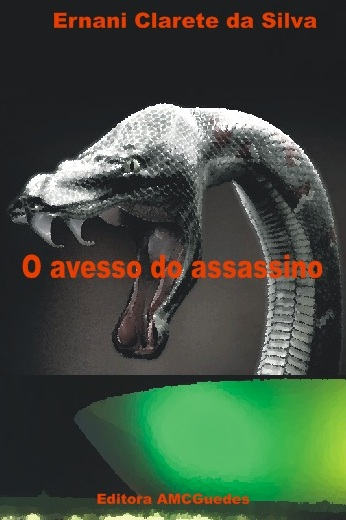 O avesso do assassino